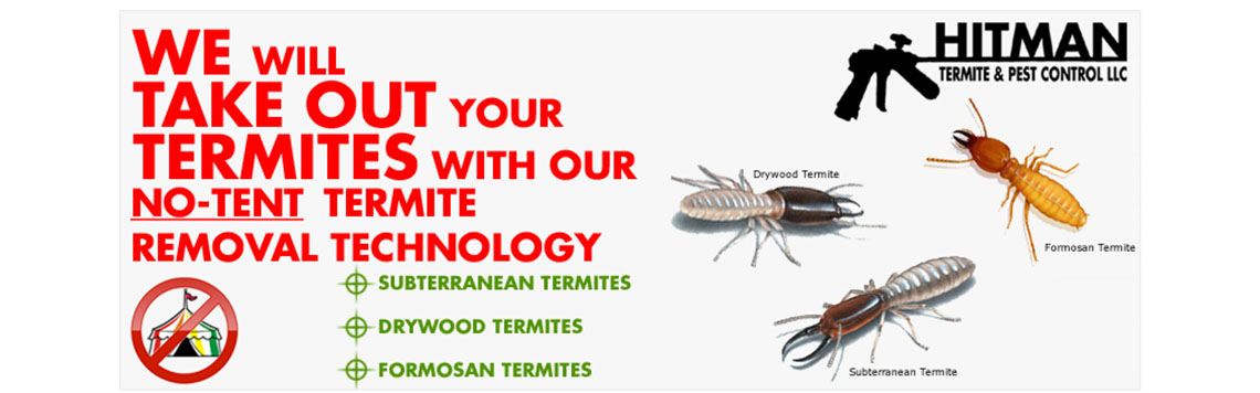 Boca Raton Pest Control Slide  sc 1 th 125 & Hitman Pest Control u2014