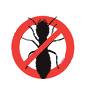 fort lauderdale termite control