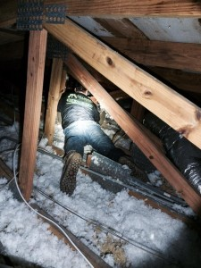ched attic